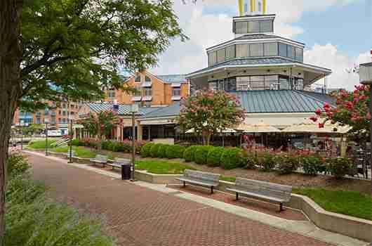 Cockeysville MD